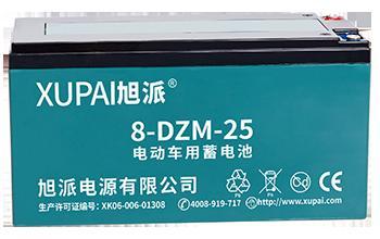 8-DZM-25 电动车电池