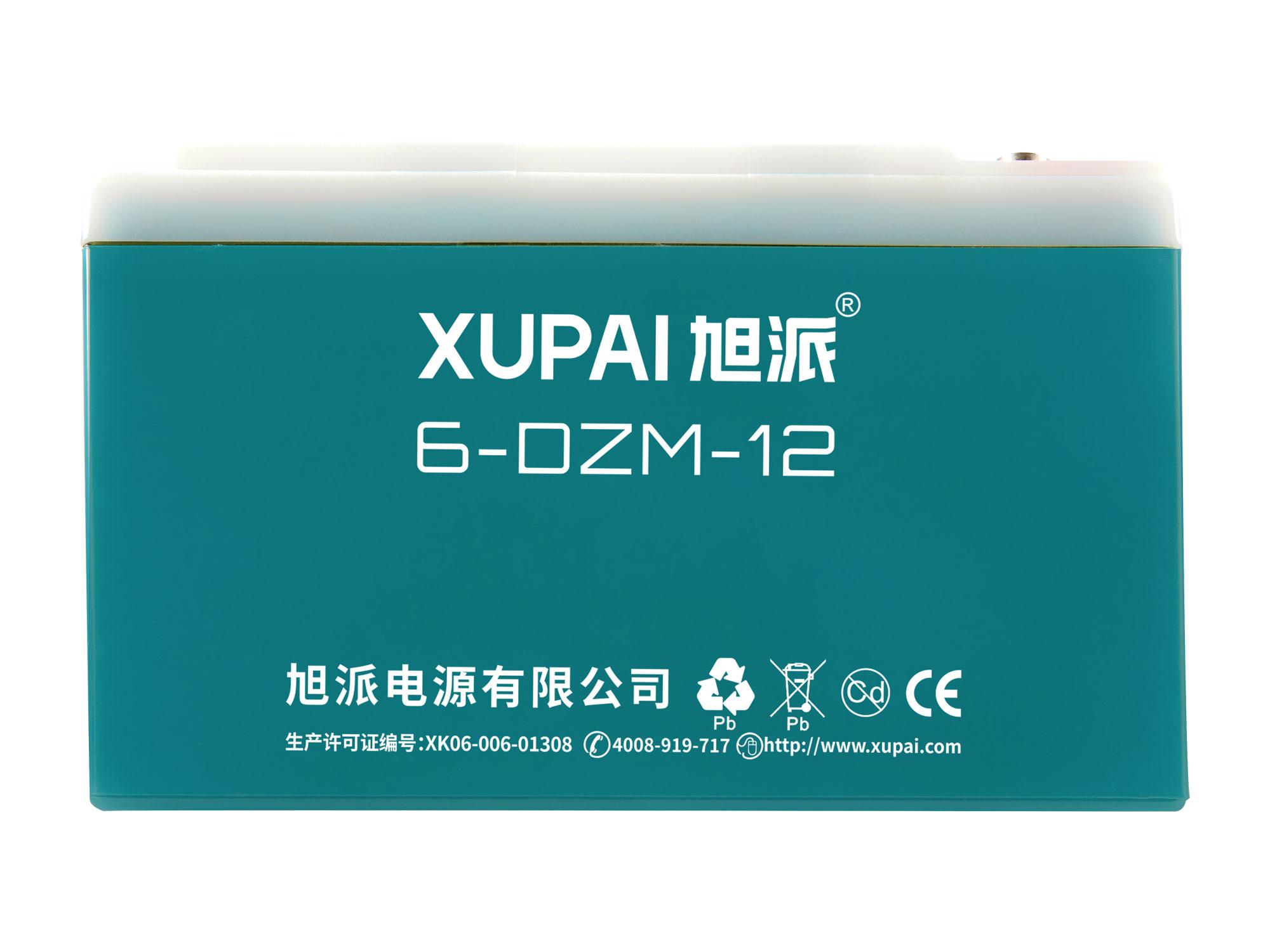 6-DZM-12 电动车电池