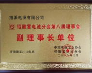 Honored as Vice President of the Lead-Acid Battery Commitment
