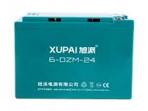 6-DZF-24 電動車電池