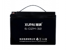 6-DZM-32 电动车电池
