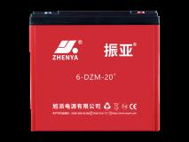 振亚6-DZM-20+电动车电池