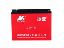 振亚6-EVF-45+电动车电池