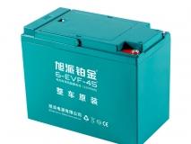 6-EVF-45铂金电池