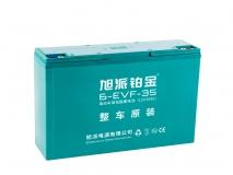 6-EVF-35铂金电池
