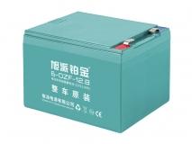 6-DZF-12.8铂金电池